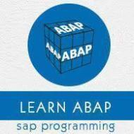 Subbu Sap Abap online training Consultanta photo