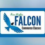 Falcon Classes photo