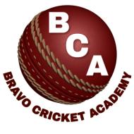 Bravo Cricket Academy Cricket institute in Mira-Bhayandar