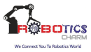 Robotics Charm photo