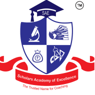 Scholars Academy of Excellence photo