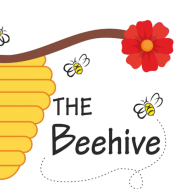 The Beehive Summer Camp institute in Gurgaon