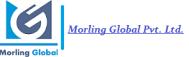 Morling Global Data Science institute in Noida