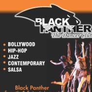 Black panther the dancer club photo