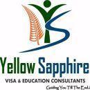 Yellow Sapphire Visa & Education Consultants photo