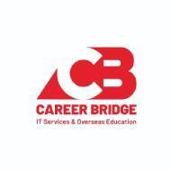 Career Bridge IT Services MSBI institute in Hyderabad
