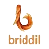Briddil Softwares Private Ltd photo