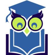Learning OWLS IELTS institute in Delhi