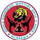 Bruce Advanced Martial Arts Shaolinkungfu and Sillambam Association Telangana photo