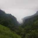Jai Sharma photo