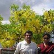 Sandhya S. photo