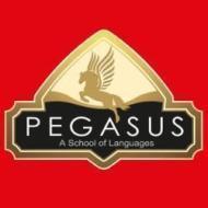 Pegasus Classes photo