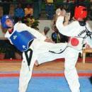 Olympian International Taekwondo Academy for Men photo