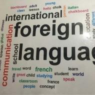 International Foreign Languages German Language institute in Delhi
