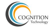 Cognition Technology .Net institute in Pune