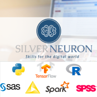 SilverNeuron Consulting Data Science trainer in Lucknow