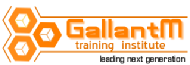 Gallantmtraining Institute photo