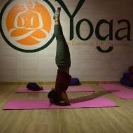 R S. Yoga trainer in Gurgaon