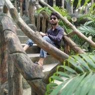 Aditya Kushwaha photo