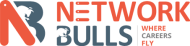 Network Bulls CCNA Certification institute in Gurgaon