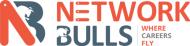Network Bulls photo