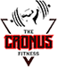 The Cronus Fittness Aerobics institute in Bangalore