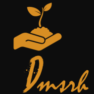 DMSRH Consulting Interview Skills institute in Bangalore