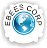 Ebees Infotrain Consultancy Services Pvt. Ltd. photo
