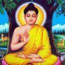 Sudhaghar G photo