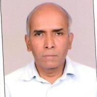V. Viswanathan Iyer photo