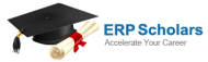 ERP Scholars SAP institute in Delhi
