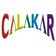 Calakar.Com Film Making institute in Pune
