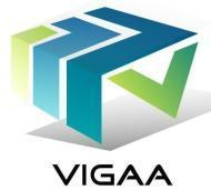 Vigaa Trainners photo