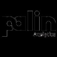 Palin Analytics Business Analytics institute in Gurgaon