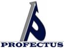 Profectus Academy photo