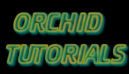 Orchid Tutorials photo