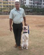 Shivaji B. photo