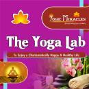 The Yoga Lab photo