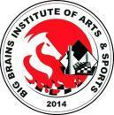 Big Brains Institute Of Arts & Sports photo