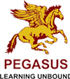 Pegasus photo
