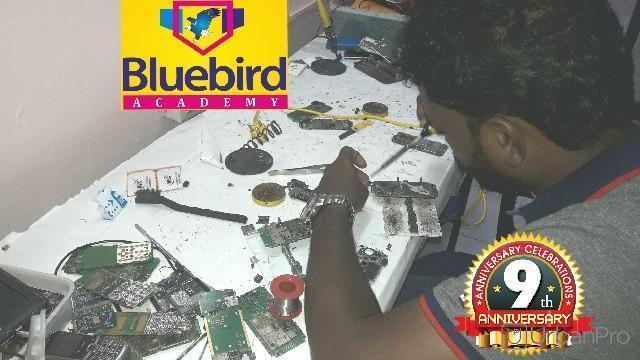 Bluebird Academy in Nungambakkam, Chennai