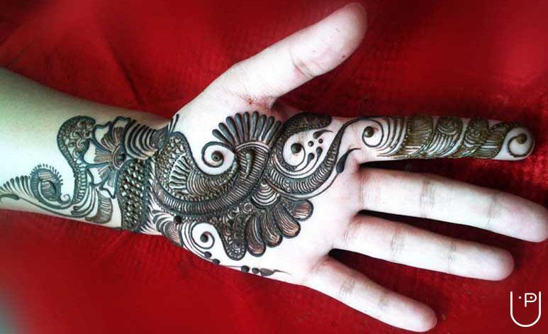 Bridal Mehndi Training : Ravi mehandi arts in m g road indore