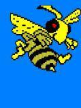 Bizi Bees Play Schools