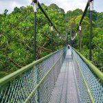 singapore hiking trails