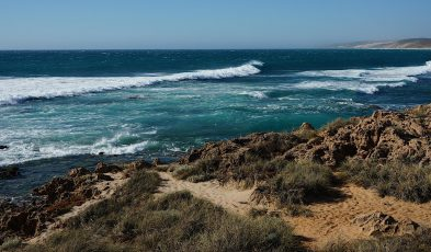 western australia expectations