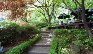 outdoor cafes in korea