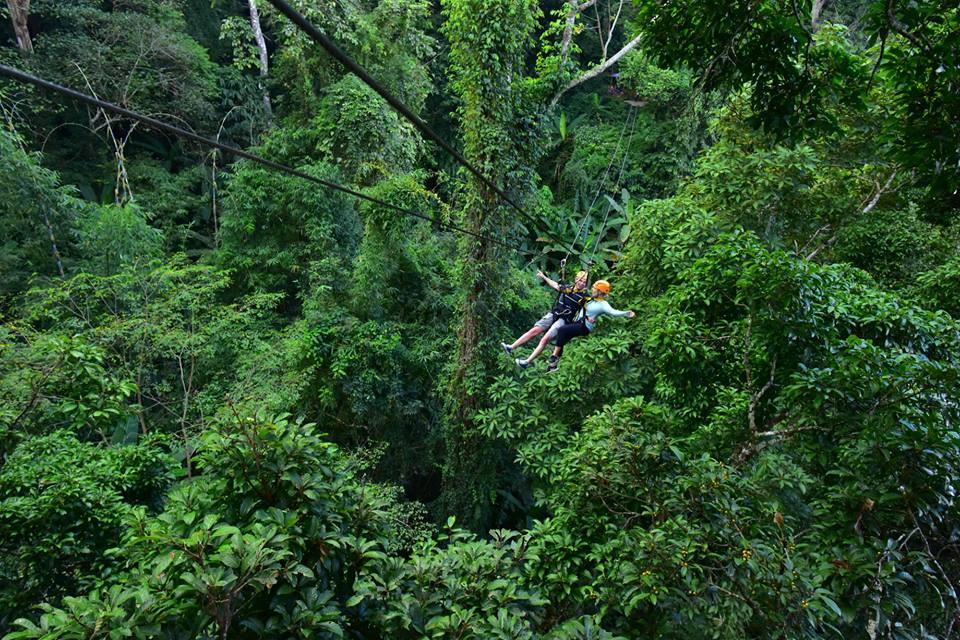 Chơi gì ở Chiang Mai? Gibbon Zipline