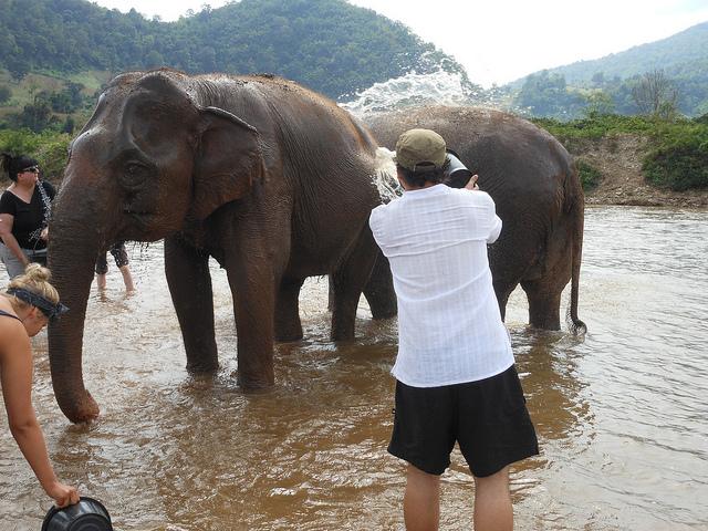 Blue Elephant Thailand Tours Chiang Mai