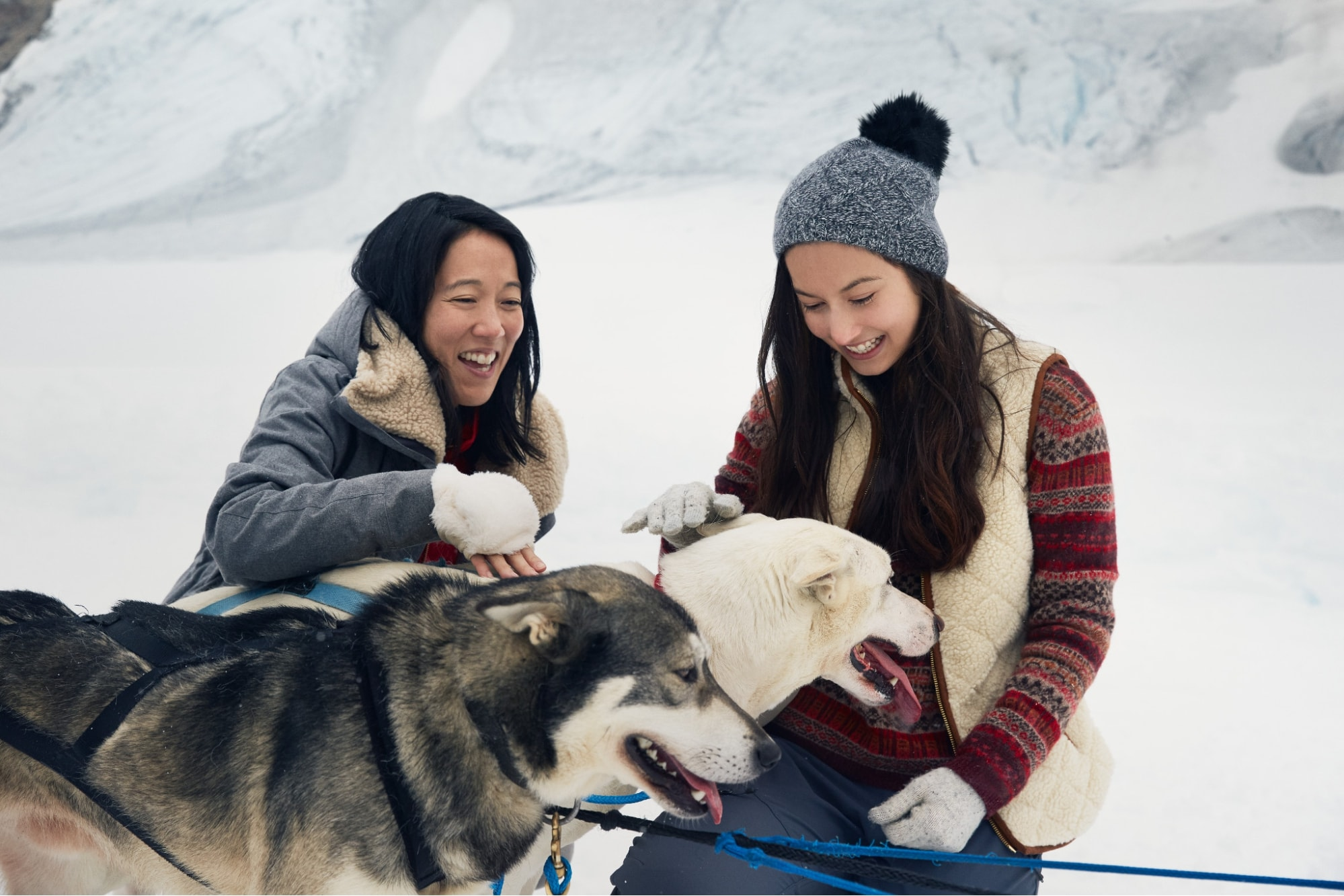 Dog Sledding on the Mendenhall Glacier, Alaska