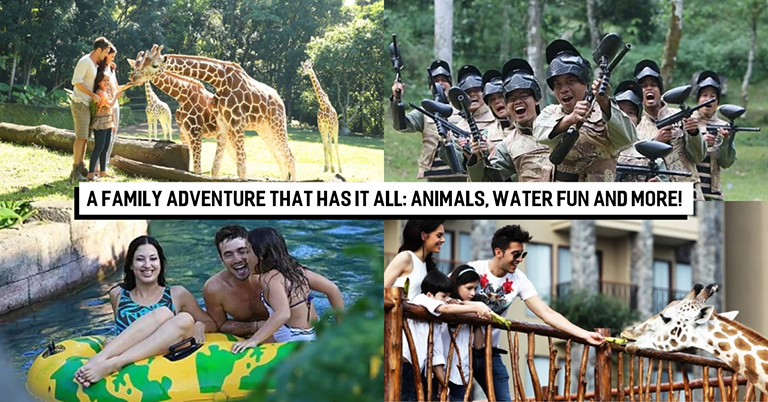 Taman Safari Prigen: Your Next Exciting Family Adventure Awaits Here!